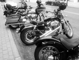 Biker Party