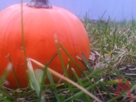 1111-Pumpkin-Simple---Marked