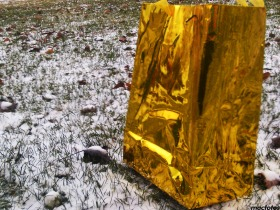 1117-Splash-of-Gold-closer