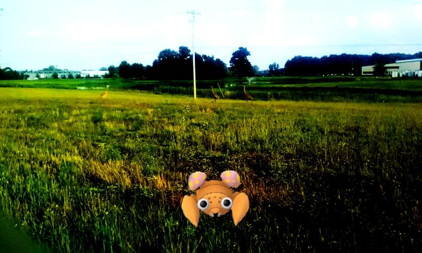 pokemongo4.jpg